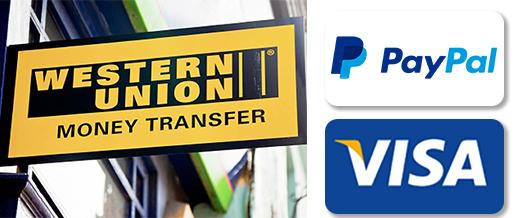 payments paypal visa poloballs_blanco